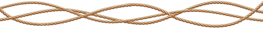 This image has an empty alt attribute; its file name is vector-d-realistic-jute-hemp-fiber-ropes-vector-d-realistic-fiber-ropes-straight-tied-up-jute-hemp-twisted-cords-loops-image-copy-1024x118.jpg